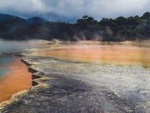 Бассейн восходящего потока теплого воздуха Rotorua Новой Зеландии стоковое фото