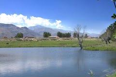 Бассейн в графстве Спрингфилда Стоковые Фото