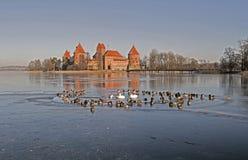 Бассейн зимы Стоковые Изображения
