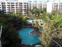 Бассейн под кокосовыми пальмами стоковые фотографии rf
