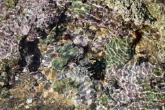Бассейн утеса мозаики Стоковая Фотография