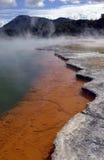 Бассейн Шампани - Новая Зеландия Стоковые Фото