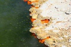 Бассейн Шампани Стоковое Фото
