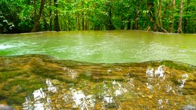 Бассейн яркого colorfull естественный в ландшафте джунглей экзотического тропического леса тропическом сток-видео