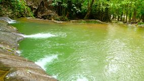 Бассейн яркого colorfull естественный в ландшафте джунглей экзотического тропического леса тропическом акции видеоматериалы