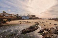 Бассейн для детей, La Jolla, Калифорния Стоковая Фотография RF