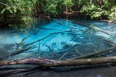Бассейн Sra Morakot голубой на провинции Krabi Стоковое Фото