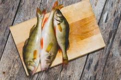 Бас реки на разделочной доске Захватнические рыбы на деревянной предпосылке Стоковая Фотография RF