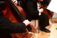 Бас строки/бас-гитарист двойника в оркестре Стоковое фото RF
