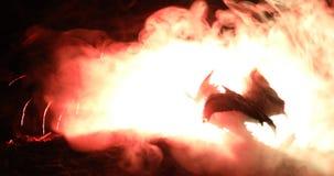 Батальная сцена драконов Дракон 2 подготавливает воевать Вращать земной при туманный задний тонизированный свет сток-видео