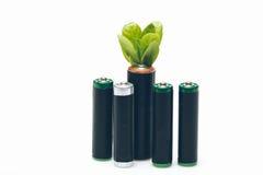 Батареи и листья изолированные на белизне Стоковое Изображение RF
