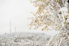 2 башни антенны связи на холме в зиме Стоковое фото RF