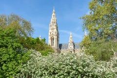 Башни городской ратуши Вены весной, Австрия стоковое фото rf