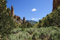 Gulch Лесли - восточное Орегон Стоковая Фотография RF