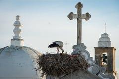 Башни церков башен гнезда и церков аиста в Olhao, Португалии Стоковая Фотография
