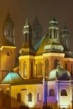 Башни церков собора в туманном вечере Стоковое Изображение RF