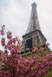 башня весны eiffel Стоковая Фотография