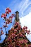 башня времени весны eiffel Франции paris Стоковые Фото