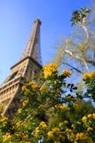 башня времени весны eiffel paris Стоковые Фото