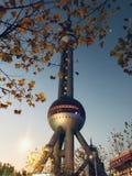 Башня груши стоковые фото