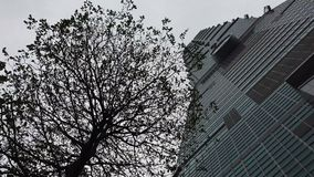 Башня дела в городе сток-видео