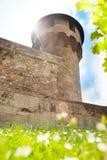 Башня жезла в замке Будапеште Buda, Венгрии стоковая фотография rf