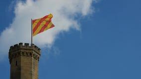 Башня замка с флагом стоковое фото rf