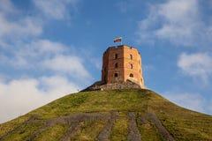 Башня замка Gediminas в Вильнюсе, горизонтальном стоковая фотография