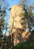 Башня замка Zebrak Стоковые Фото