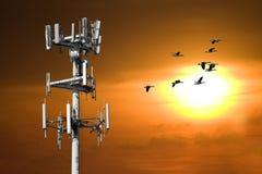 башня захода солнца Стоковое фото RF