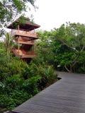 Башня зрения в лесе Стоковое Изображение RF