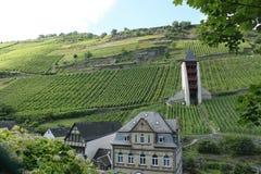 Башня и виноградники Рейна Стоковое Изображение RF