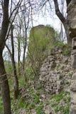 Башня и внешняя стена остаются от крепости Bologa средневековой Стоковые Изображения