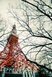 Башня и дерево токио в сцене фантазии стоковые изображения rf