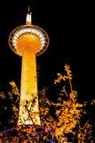 Башня Киото к ноча стоковое изображение rf