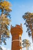башня кирпича старая Berdsk, Сибирь, Россия Стоковое Изображение