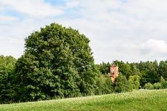Башня красного кирпича на загородном доме Стоковые Фото