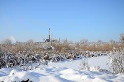 Башня линии электропередач расположена в болотистой области, покрытой с снегом Большое поле желтых bulrushes Стоковое Фото