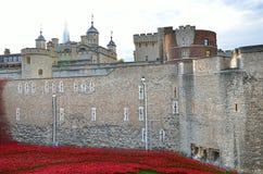 Башня Лондона с морем красных маков для того чтобы вспомнить упаденных солдат WWI - 30-ое августа 2014 - Лондона, Великобритании Стоковые Фото