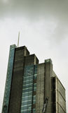 Башня Лондон цапли Стоковые Фотографии RF