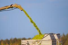 башня маиса отстрела урожая тяпки Стоковое Фото