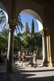 башня мечети cordoba стоковая фотография rf