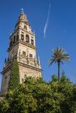 башня мечети cordoba Стоковое Изображение RF