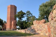 Башня мыши Стоковое Изображение RF