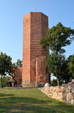 Башня мыши Стоковые Изображения RF