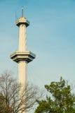 Башня парка атракционов стоковая фотография rf