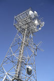 башня радиосвязей Австралии Стоковая Фотография RF
