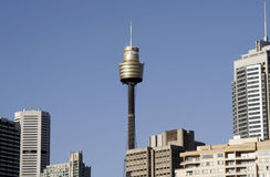 башня Сиднея Стоковая Фотография RF