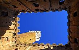 Башня Сиены Стоковая Фотография
