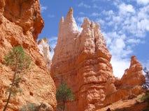 башня скалы каньона bryce стоковые изображения rf